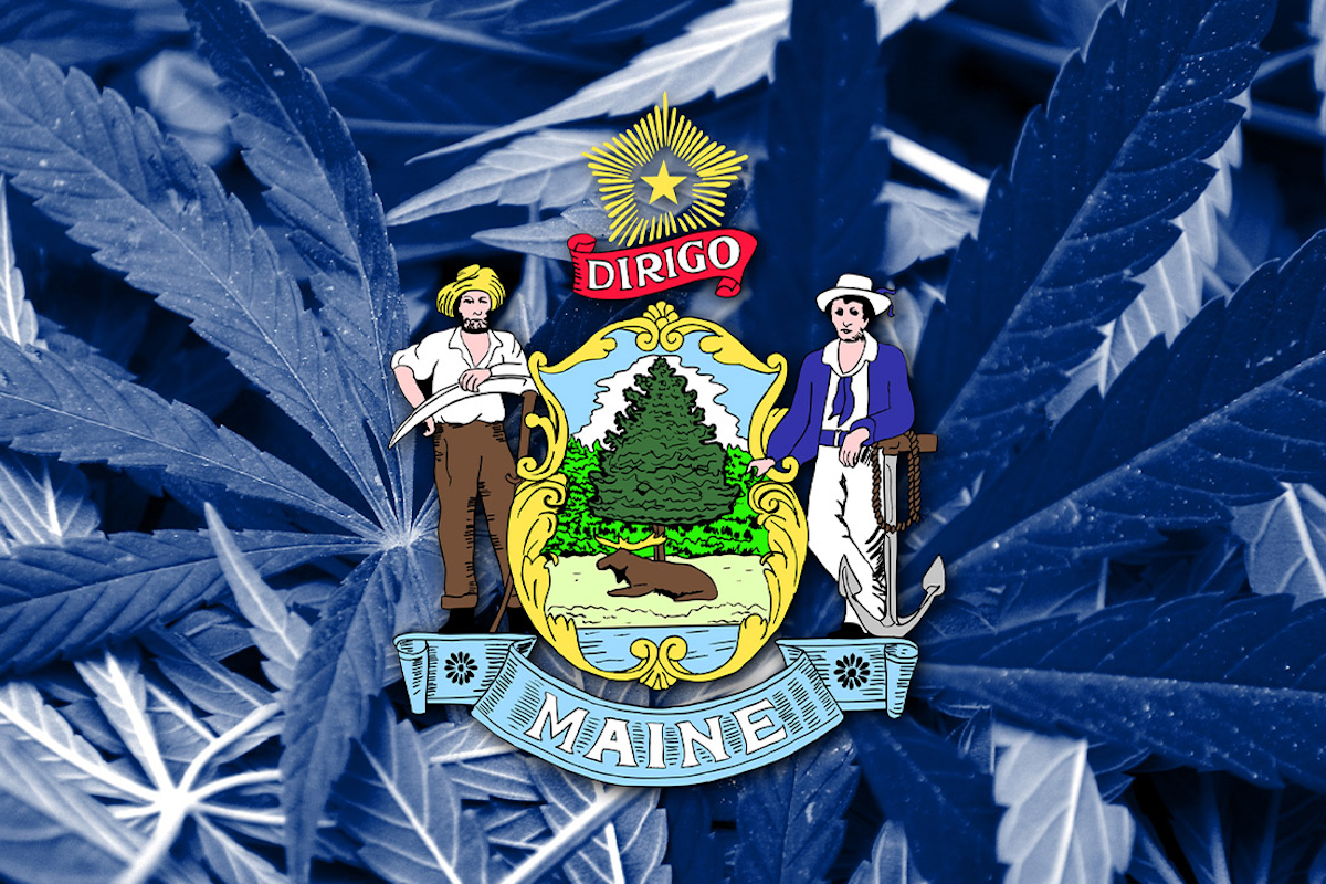 Maine medical cannabis
